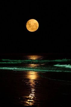 moon#orange#ocean#beach#night