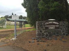 Where To Eat On The Big Island Of Hawaii - Volcano Winery on the Big Island