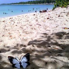 S'installer sur la plage, laisser courir son imagination et trouver l'inspiration. #effetpapillon #TEDxPTP