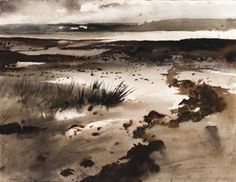 Tide Pools By Andrew Wyeth