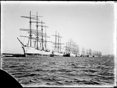 looks like south australia. ships waiting for wheat. Merchant Navy, Newcastle Nsw, Old Port, Boat Stuff, Ship Art, Model Ships, Tall Ships, Water Crafts, Old Photos
