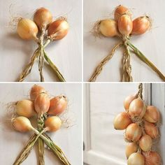 Why You Should Braid Your Onions Like a Pioneer Woman — Tips from The Kitchn Maybe cuz it looks so cool? Homestead Gardens, Farm Gardens, Homestead Farm, Konservierung Von Lebensmitteln, Organic Gardening, Gardening Tips, Veg Garden, Vegetable Gardening, Vertical Vegetable Gardens