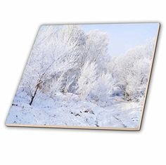 Yves Creations Winter Scenery - Snowy Trees - 8 Inch Cera... https://www.amazon.com/dp/B00AFTJASE/ref=cm_sw_r_pi_dp_3SaAxbQGF0APD