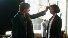 NEWT AND TINA AND OHMSGSH HIS HUFFLEPUFF SCARF I CANT