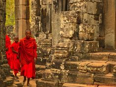 Things you must know before visiting Cambodia Cambodia Beaches, Culture Shock, Photographs, Photos, Guide Book, You Must, Backpacking, Travel Inspiration, Orange