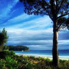 Bruny Island #Tasmania #Australia    Photo by seeaustralia