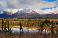 A river runs across a flat plain covered in patches of grass and trees with large snow covered mountains rising in the background under a low hanging cloud.