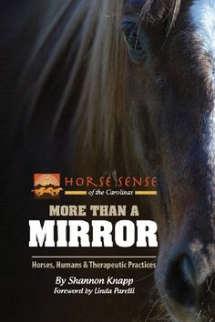 More Than a Mirror: Horses, Humans & Therapeutic Practices Non-mounted Equine Assisted Therapy