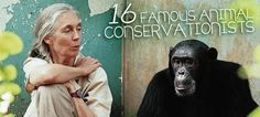 In the field or in front of the camera, these amazing conservationists have dedicated their lives to protecting the Earth and its creatures. #animals #conservation