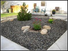 1000 Images About Landscaping Ideas On Pinterest Front
