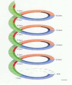 Cycles Of Human Life (Every Seven Years You Change) Human Life Cycle, Cycle Of Life, Piercings, Sweet Home, Life Cycles, Psychology, Yoga, Spiral, Birth