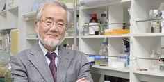 Yoshinori Oshumi riceve il Premio Nobel per la Medicina