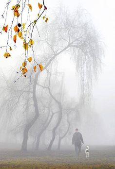 Man and dog in the misty landscape. Enchanted, Serenity, Cool Photos, Beautiful Pictures, Misty Day, Foggy Morning, Early Morning, Autumn Morning, Beautiful World