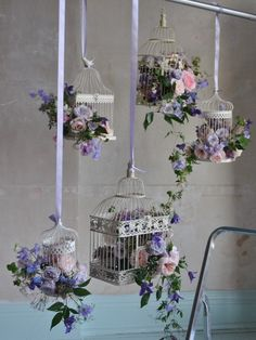 Bird Cages & Flowers