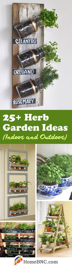 These 25+ Herb Garden Ideas for Indoors and Outdoors you'll surely love!