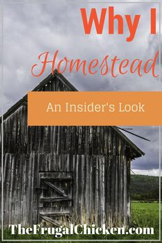 Ever wonder why someone chooses to homestead? Here's an insider look! From FrugalChicken