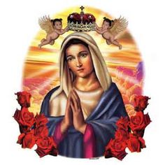 http://www.floozeesdoozees.com/product/blessed-virgin-mary-t-shirt/