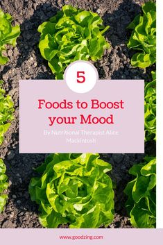 Work day blues got you down? Discover the foods you should be eating to boost your mood, without paying the price tag for a nutritionist, in our article by Nutritionist Alice Mackintosh! Holistic Nutrition, Proper Nutrition, Nutrition Education, Healthy Nutrition, Health And Wellness, Nutrition Tips, Nutrition Resources, Mental Health, Health Care