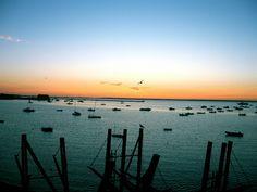 Flyer's Moorings in Provincetown Harbor #travel #massachusetts Credit: Noah Santos