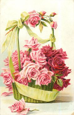 roses, in green basket with green ribbon, many pink and red roses, one rose in front