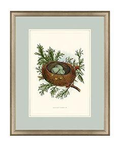 Art Source Nest Print I, Multi