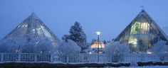 Check out the Botanical Gardens in Oulu!