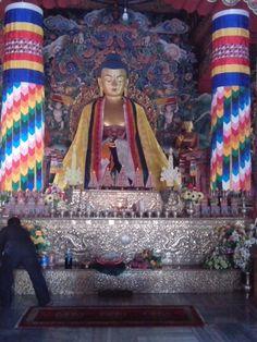 Lord budha