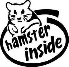Hamster Inside Funny Die-Cut Decal Car Window Wall Bumper Phone Laptop