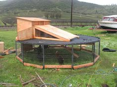 turn on old trampoline frame into a chicken house.