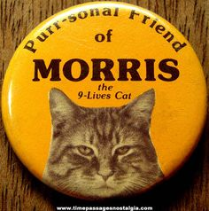 Morris the cat! The original Grumpy Cat...or was that finicky?