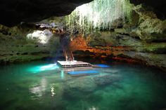 Devil's Den, Florida one of North America's most prehistoric places, Devil's Den -- an underground spring inside a dry cave in central Florida. The remains of many extinct animals from the Pleistocene Age (2 million - 10,000 years ago) were discovered at Devil's Den, including the bones of early man, dating back to 75,000 B.C. Places In Florida, Florida Vacation, Florida Travel, Vacation Spots, Travel Usa, Florida Usa, Florida Trips, Clearwater Florida, Sarasota Florida