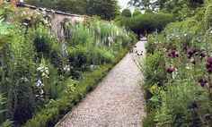Lovely combinations for a picking garden - and arrangements for a Claire Basler painting