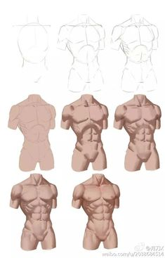 Digital Painting Tutorials, Digital Art Tutorial, Art Tutorials, Anatomy Sketches, Art Drawings Sketches, Drawing Male Anatomy, Human Anatomy Art, Figure Drawing Reference, Drawing Reference Poses