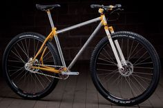 Single Speed 29er