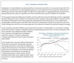Zimbabwe Situation Report By The IMF   Zim Dollar - http://globalcurrencyreset.tumblr.com/137598191957