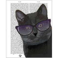 FabFunky Black Cat With Sunglasses Print ($45) ❤ liked on Polyvore featuring home, home decor, wall art, animals, art, cats, backgrounds, black, black wall art and animal wall art