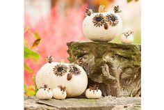 Jópofa őszi dekoráció