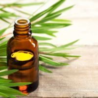 How Effective Is Vitamin E Oil For Treating Acne And Pimples? , You'll name vitamin E oil vitamin 'efficient' oil whenever you notice how properly it really works in your pimples and pimples. This magical oil makes yo , Listerine, Tea Tree Essential Oil, Essential Oils, Huile Tea Tree, Vitamin A Acne, Oils For Dandruff, Diy Peeling, Grow Hair, Aromatherapy
