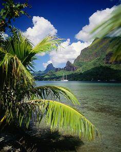 Cooks Bay, French Polynesia