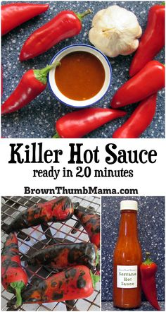 Feel the burn with this killer homemade hot sauce recipe. Ready in 20 minutes with only 4 ingredients! Mix and match peppers to make it hot or mild. Jalapeno Sauce, Hot Sauce Recipes, Chili Pepper Hot Sauce Recipe, Hot Pepper Recipes, Recipe Ready, Mexican Food Recipes, Hot Sauces, Hot Sauce Homemade, Homemade Food
