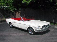 1965 Mustang                                                                                                                                                                                 More
