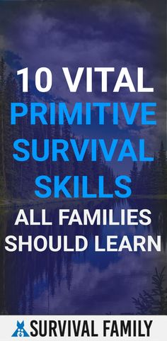 What did the ancient families of the past have to do in order to survive? Survival Family, Kids Survival Skills, Survival Prepping, Primitive Survival, Emergency Preparation, Tactical Survival, Disaster Preparedness, Financial Tips, Teaching Kids