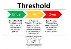 What is a threshold? #dogs #dogtraining http://www.allpositivedogtraining.com
