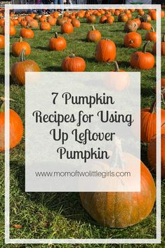7 Recipes for Leftover Pumpkins after Halloween    Halloween | Pumpkins | Pumpkin recipes |   #halloween #pumpkins #pumpkinrecipes #sustainableholidays #sustainable #butternut #butternutsoup #pumpkinsoup #pumpkinbread