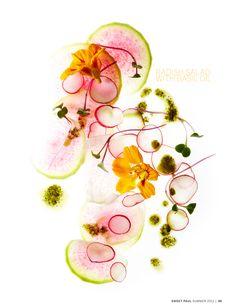 paul lowe summer salads = pretty