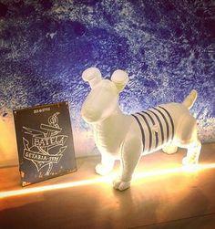 Our Marine PET Summer Decoration, Dinosaur Stuffed Animal, Pets, Shop, Animals, Animales, Animaux, Animal, Animais