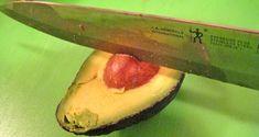 Avocado Seeds - Super Food for Super Health