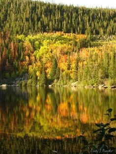 Autumn at Bear Lake, Rocky Mountain National Park by Cindy J. Buechler