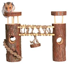 Hamster Toy House Climbing Towers for Cage Playpen: Amazon.co.uk: Pet Supplies