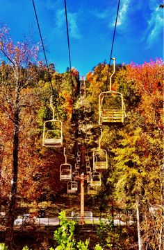 195 best things to do in gatlinburg tennessee images holiday rh pinterest com